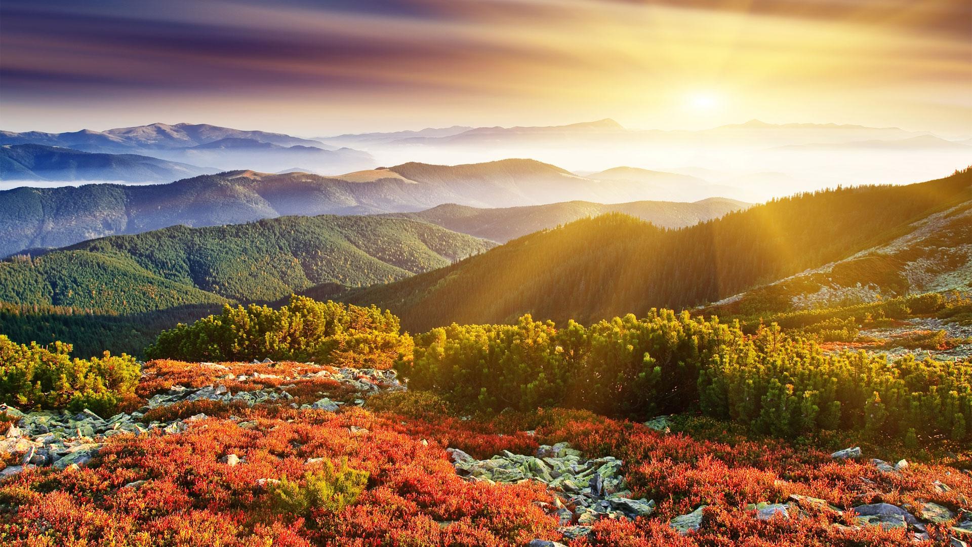 Рассвет осенью