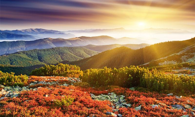 Рассвет осень картинки